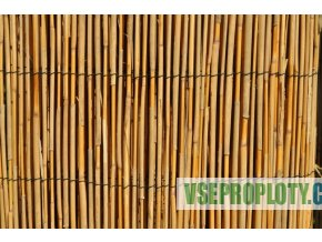 Rákos a bambus přírodní