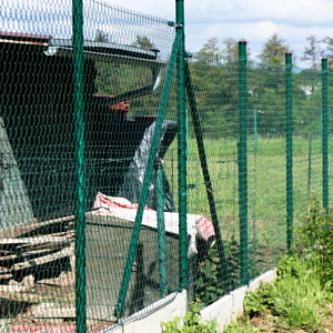 Pletivový plot