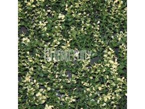 Umělý živý plot - jednostranný -bíle panašovaný zimomráz dlouhý 50x50 cm - 1 m2