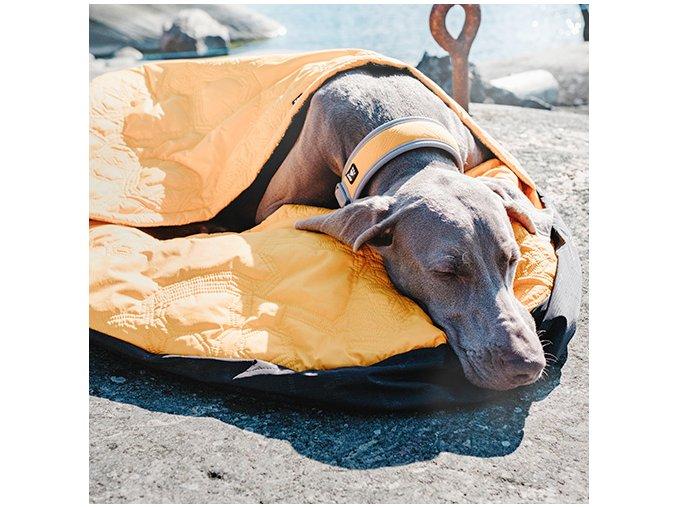 Outdoorové vybavení pro psy