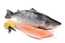 Granule z rybího masa (salmon, white fish)