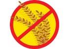 Krmiva bez obilovin
