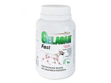 gelacan fast 150g