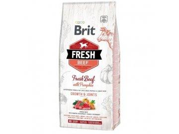 Brit Dog Fresh Beef & Pumpkin Puppy Large 2,5kg