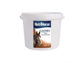 nutri horse gastro