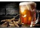 Alkohol, pivo, pařba, chlast - slast