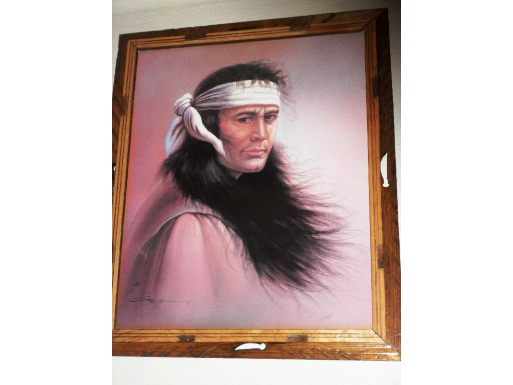 "Obraz ""Mladý indiánský bojovník"""