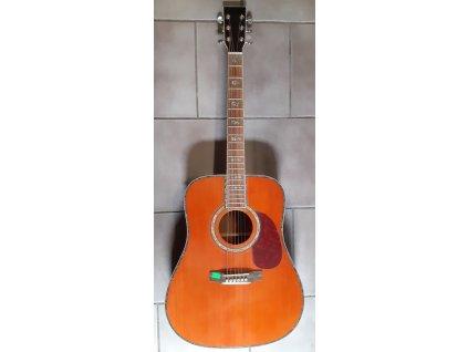 Kytara elektroakustická - kopie Martin D-45