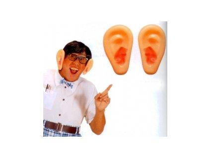 Velké uši