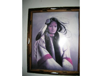 "Obraz ""Indiánská dívka"""