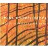 CD Irena Budweisserová - Někdy si připadám jako pták