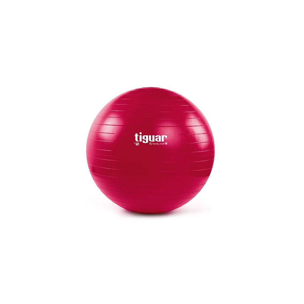 Tiguar cvičební míč s pískem 60 cm_01