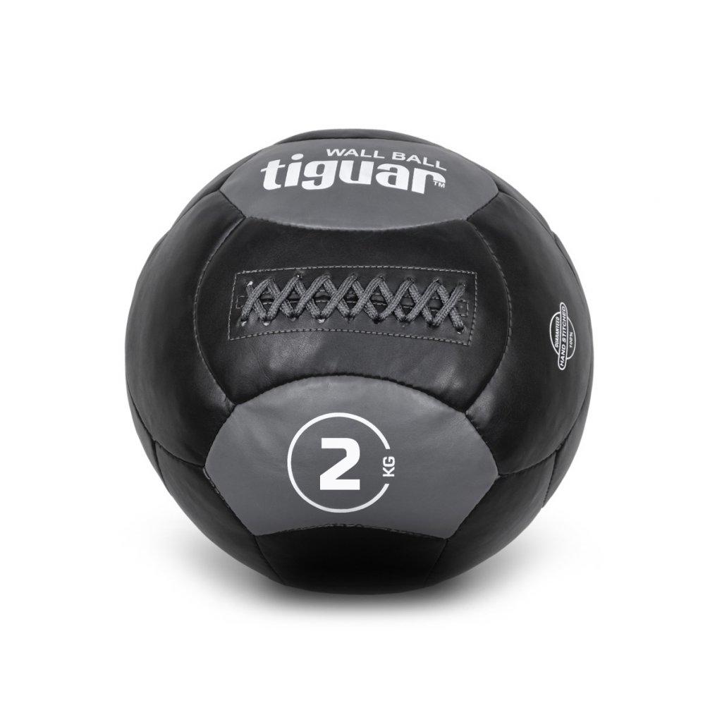 Tiguar wall ball 2 kg_01
