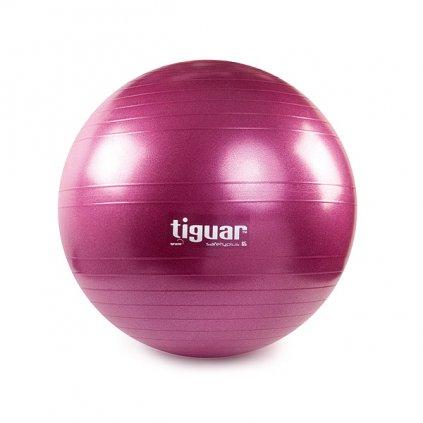 Tiguar gymnastický míč 65 cm (fialový)_01