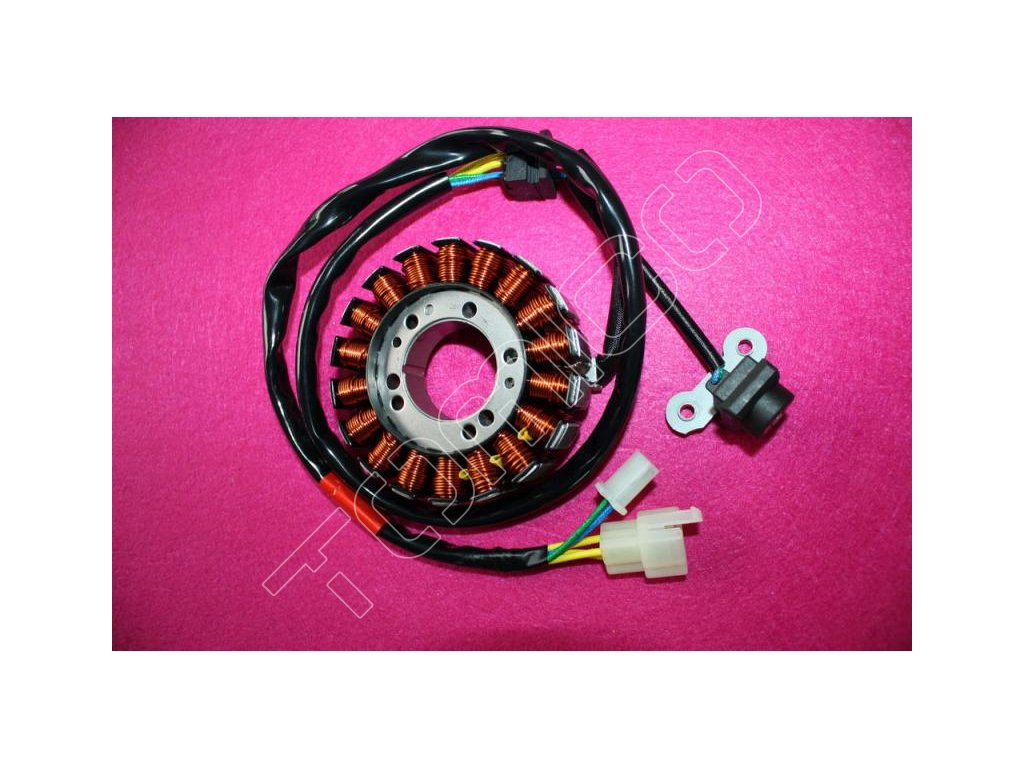 Magneto-stator na SMC Jumbo 300/302
