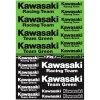 Polepy Kawasaki - zelená/černá