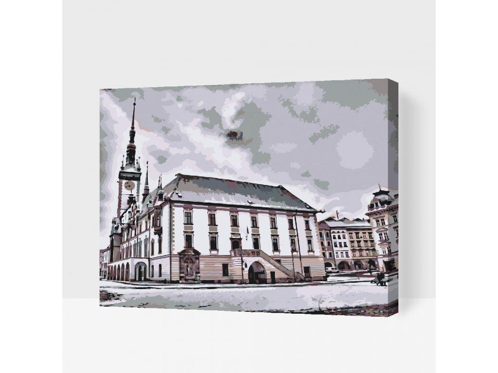 MALOVÁNÍ PODLE ČÍSEL - OLOMOUC (Rámování Bez rámu (pouze plátno), Velikost 40x50cm)