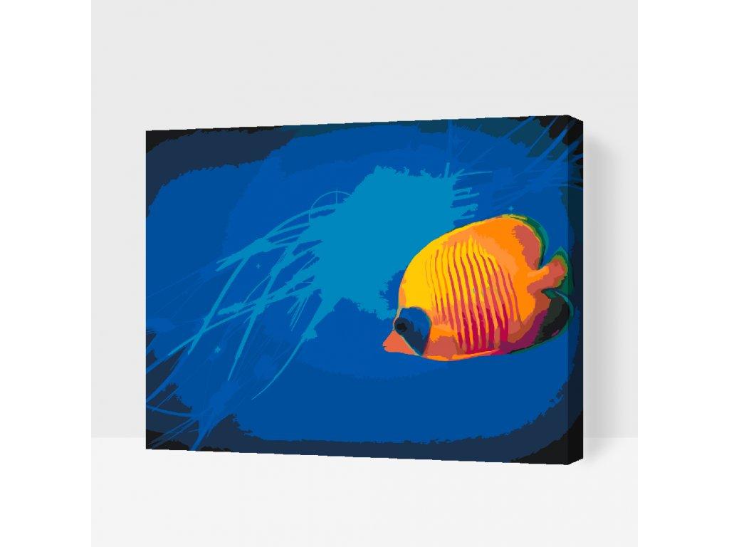 Malování podle čísel - Žlutá rybka (Rámování Bez rámu (pouze plátno), Velikost 40x50cm)