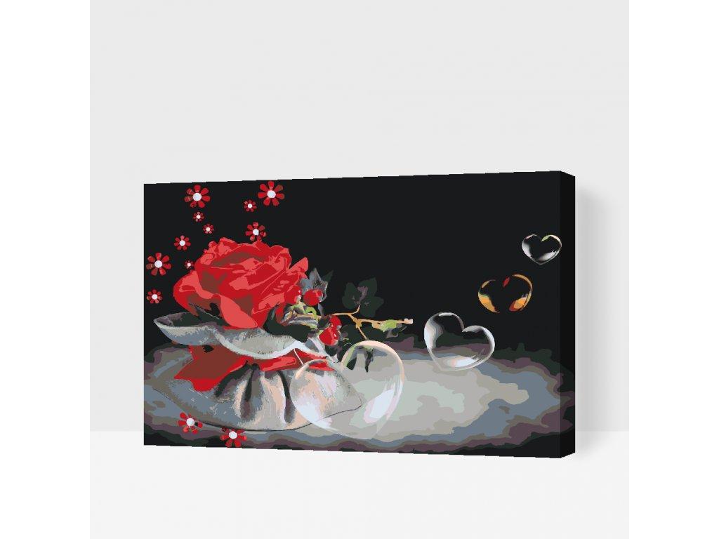 Malování podle čísel - Srdíčkové bubliny a růže (Rámování Bez rámu (pouze plátno), Velikost 40x60cm)