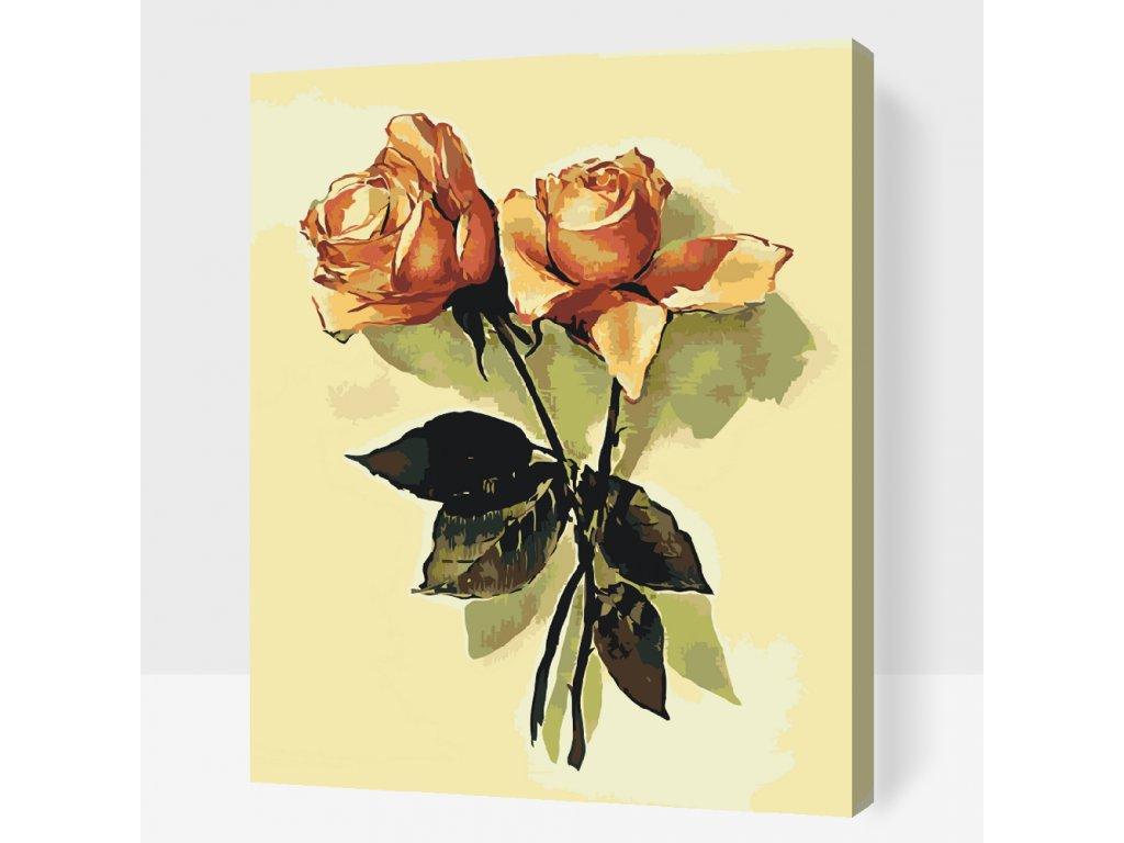 Malování podle čísel - Vintage růže 2 (Rámování Bez rámu (pouze plátno), Velikost 40x50cm)