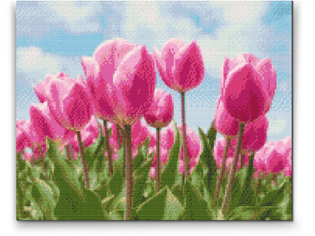 Tulipány diamantovačka
