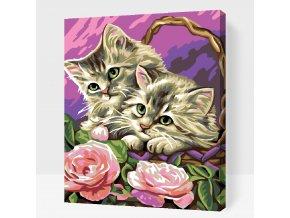 Kočičky v košíku