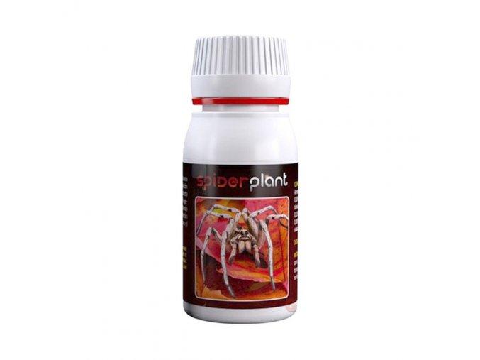 agrobacterias spider plant 60 ml