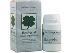 161091 1 no mercy bacterial 50ml