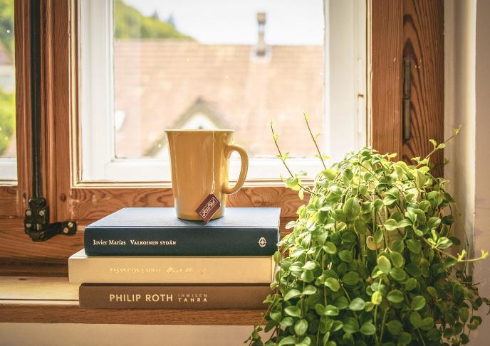 Zázračné pokojovky do vaší ložnice