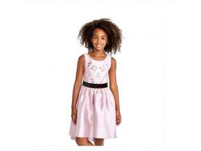 Dress pink gem
