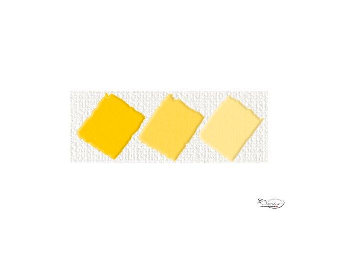 Hobby Acryl matt zlatožlutá 59 ml