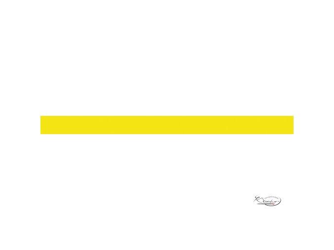 Pěnová guma 20x29 cm 2 mm žlutá