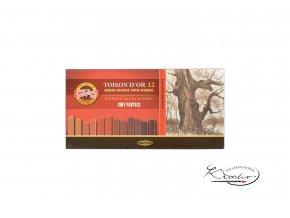 TOISON D´OR 12 souprava prašných kříd - hnědé hranaté