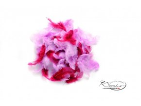 Peříčka 2g - Růžový mix