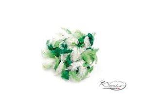 Peříčka 2g - Zelený mix