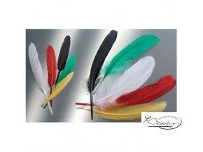 Peří indiánské 16cm Mix barev