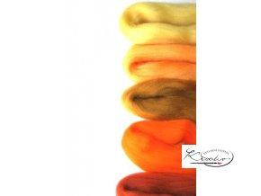 Ovčí vlna merino česaná 20g Mix 5 slunečních barev