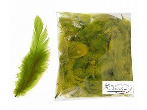 Peří dekorační 10g - Olivové