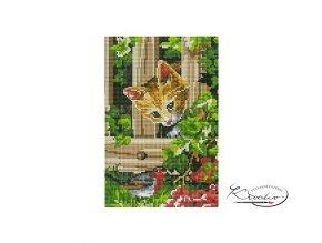 Mozaika diamantová - Kočička