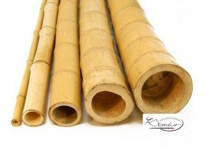 Bambus přírodní 10 cm / 10 ks