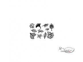 Gelová razítka - Listy maléimg preview