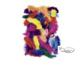 Peří pestré 25g, 4-20 cm, barevný mix