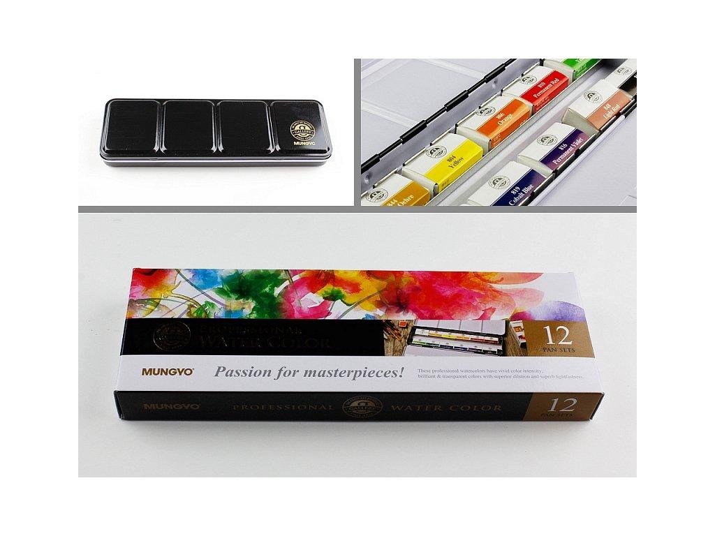 Sada profesionálních akvarelových barev 12 ks full pan