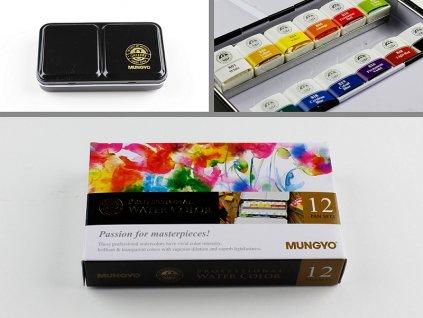 Sada profesionálních akvarelových barev 12 ks half pan