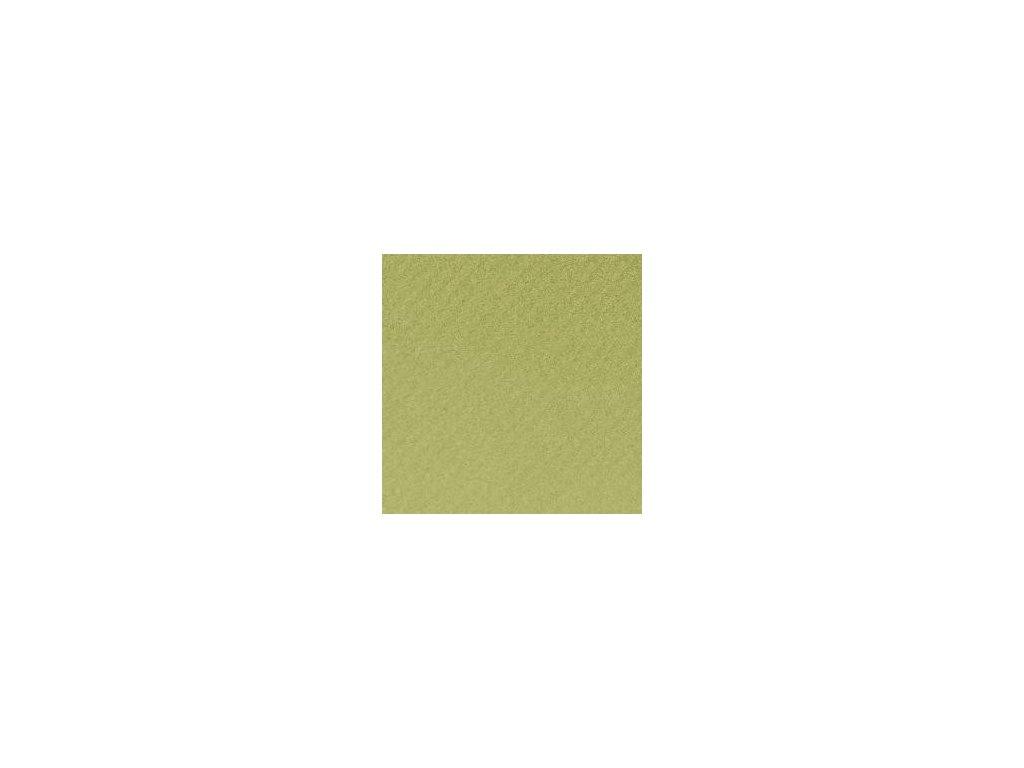 1073 mi teintes a4 160 g 480 svetle zelena