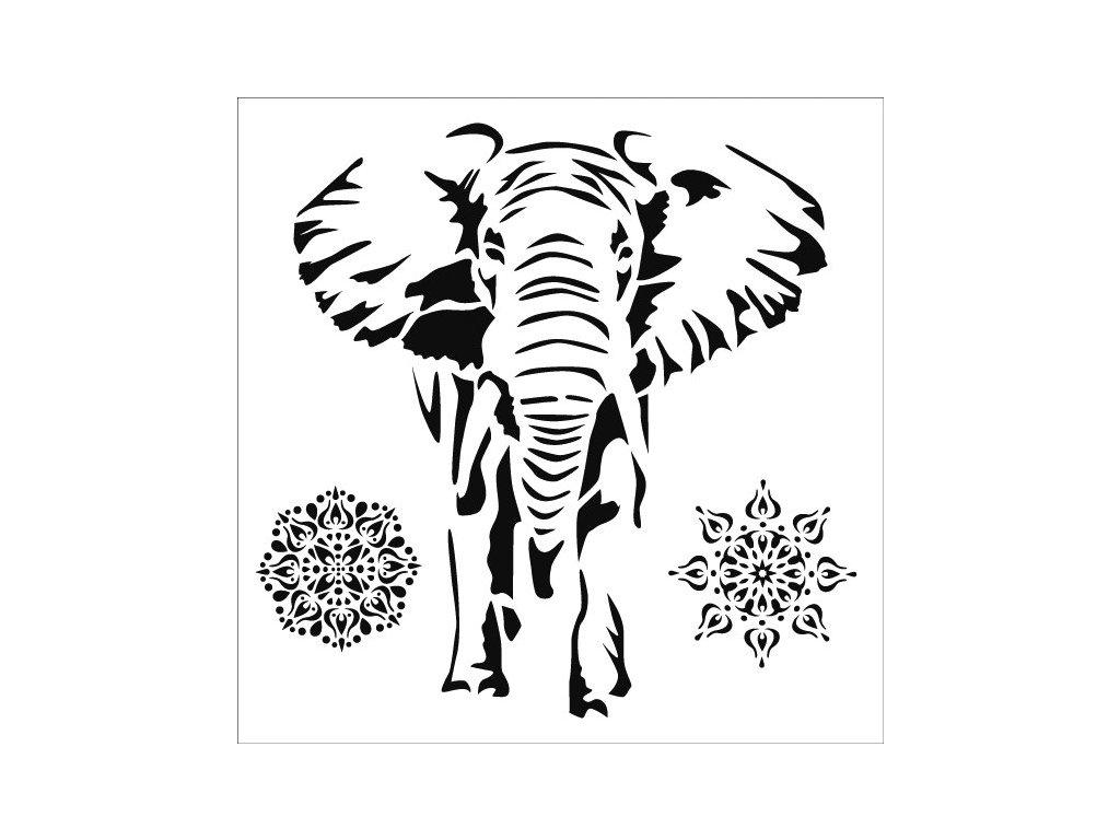 30150 sablona plastova 25 x 25 cm slon