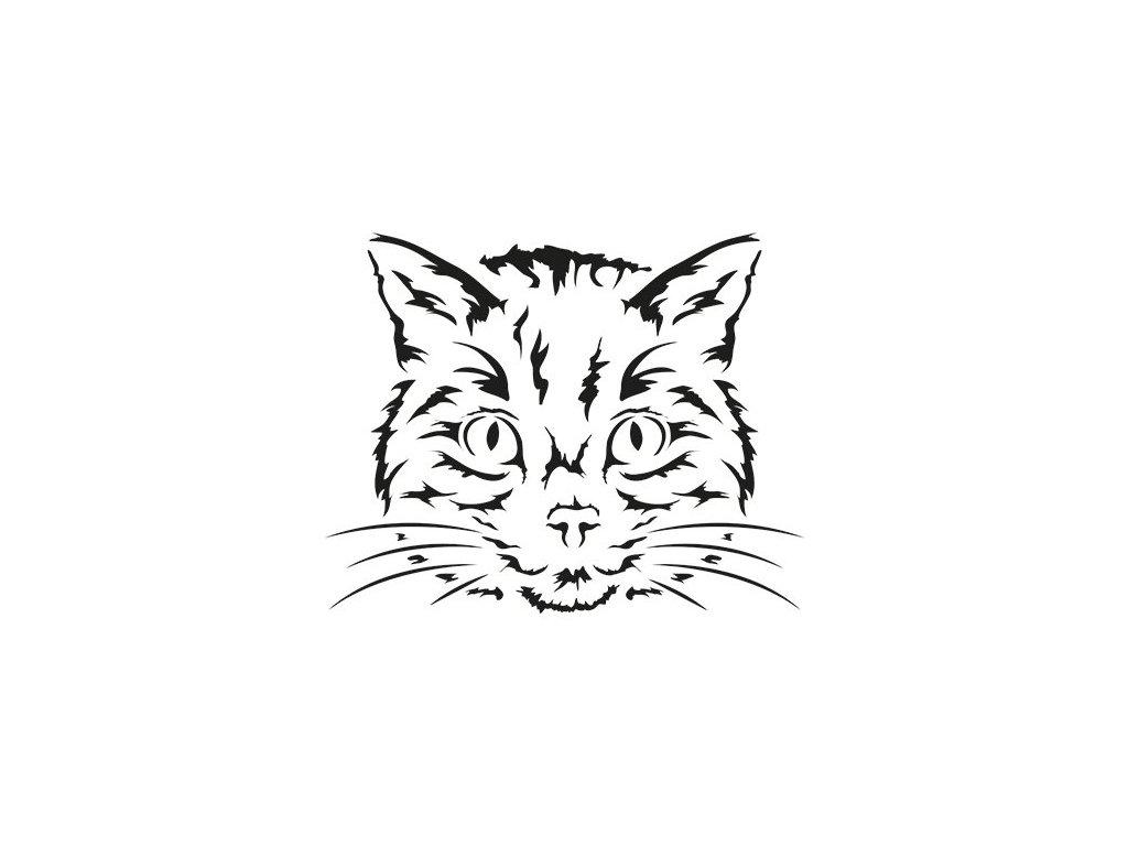 nová mokrá černá kočičkačerné paroháčské sexuální příběhy