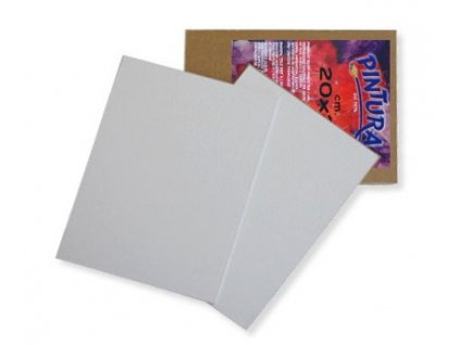 10142 1 deska s platnem pintura 18x24 cm