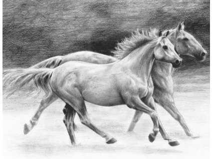 14921 3 sketching a4 kone royal langnickel