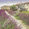 14963 ubrousek 33x33 cm lavender farm